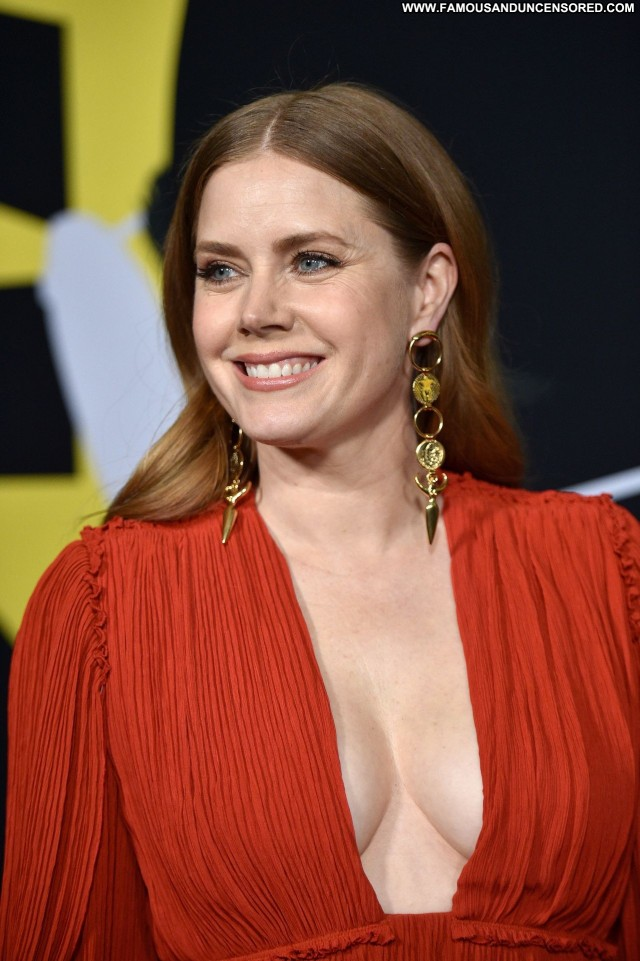 Amy Adams Beverly Hills Beautiful Usa Posing Hot Celebrity Wife