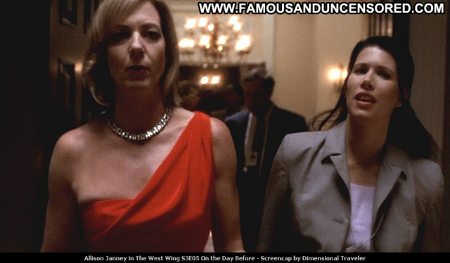 Allison Janney The West Wing Celebrity Babe Beautiful Posing Hot Tv