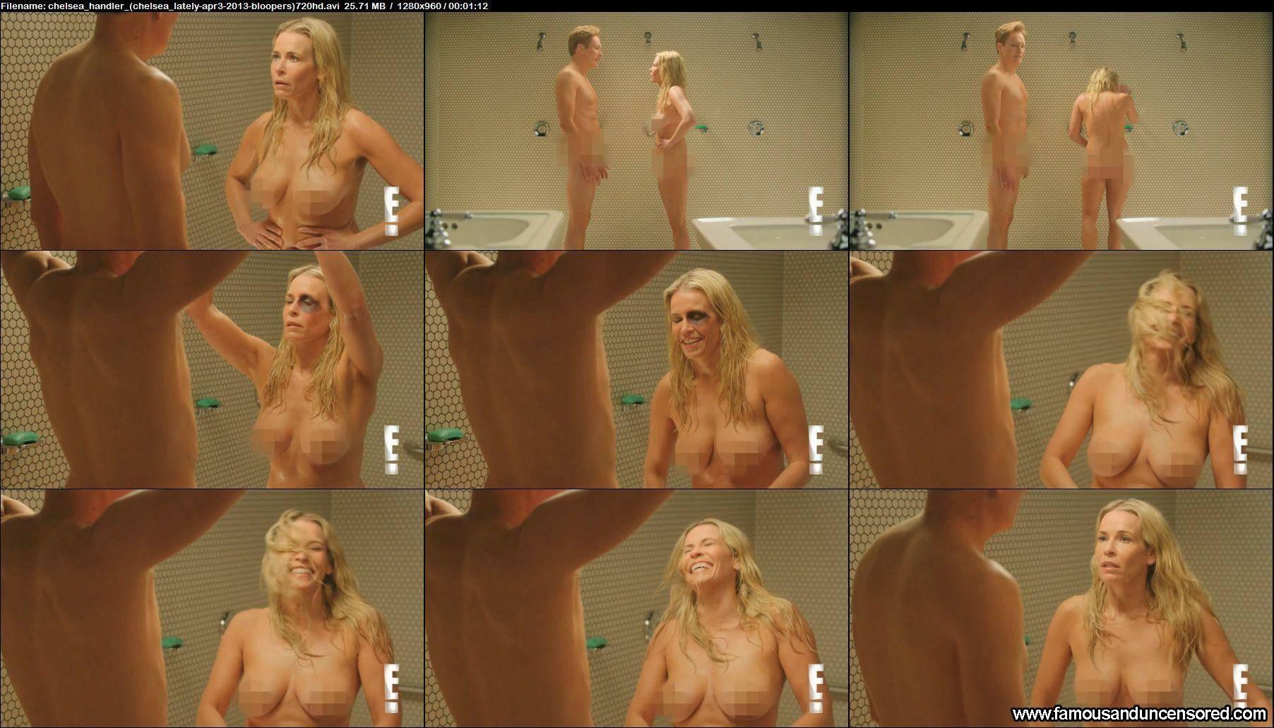 Chelsea handler poses nude