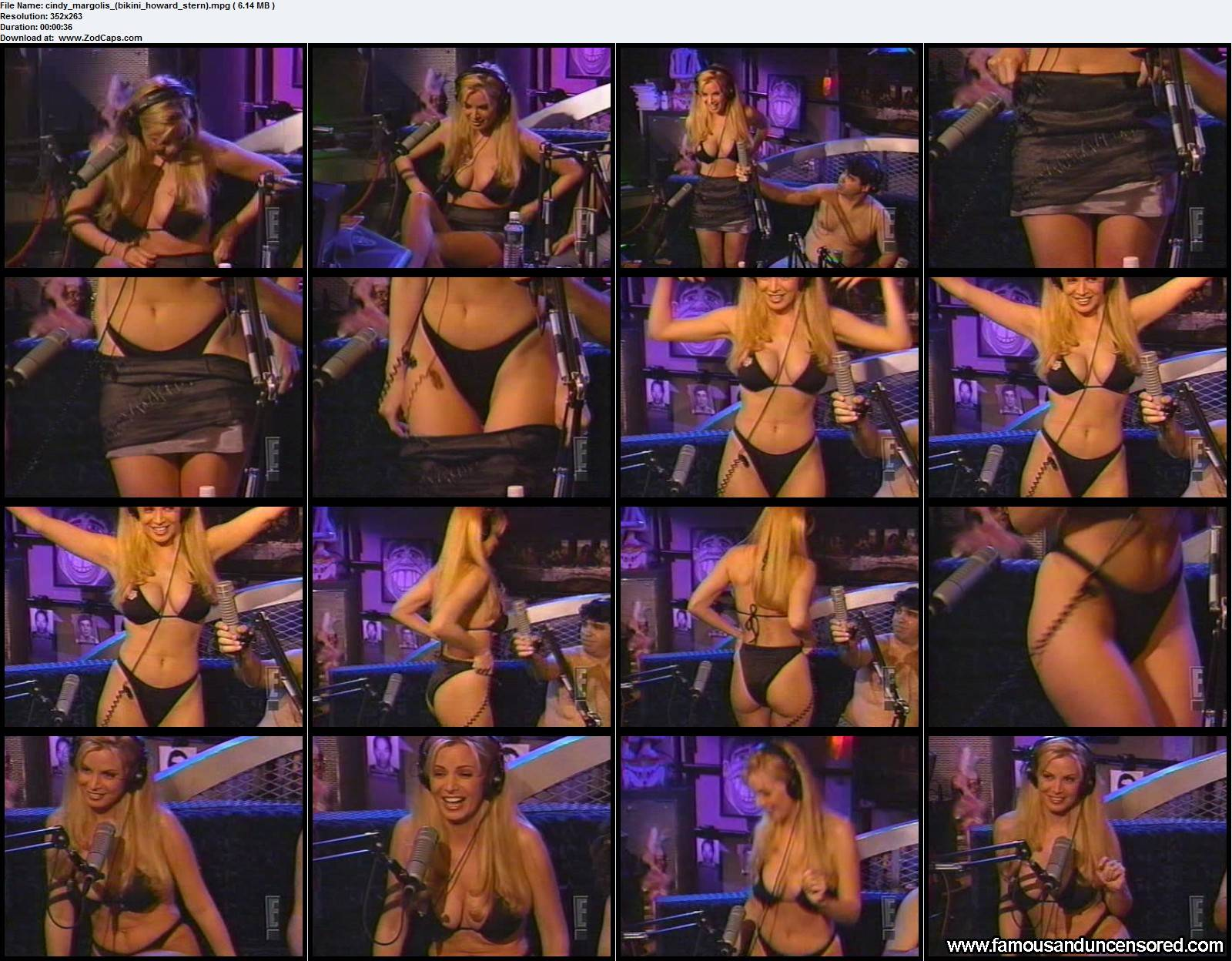 howard stern and nude girl